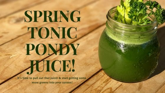SPRING TONIC PONDY JUICE!