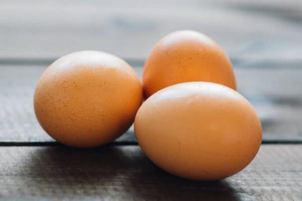high protein eggs